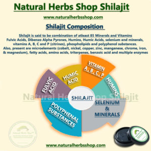 shilajit-Benefits-000005