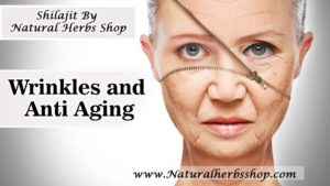 Shilajit anti aging Natural Herbs Shop