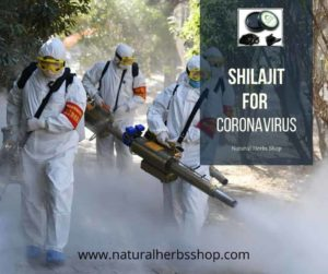 How Shilajit Helps in coronavirus | Shilajit coronavirus